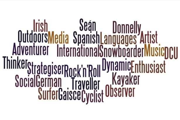 Sean Donnelly Wordle